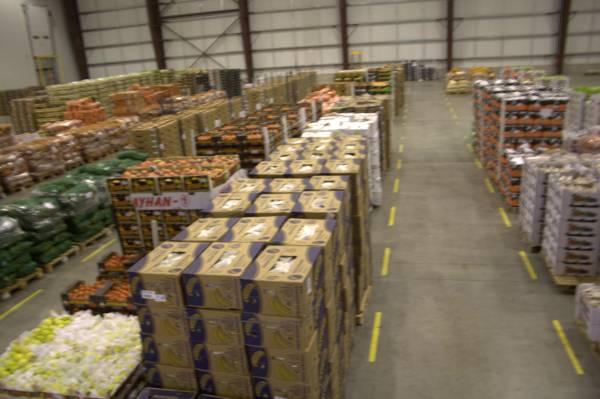 Wholesalers - SaveGuard Insurance Agency in Hayward